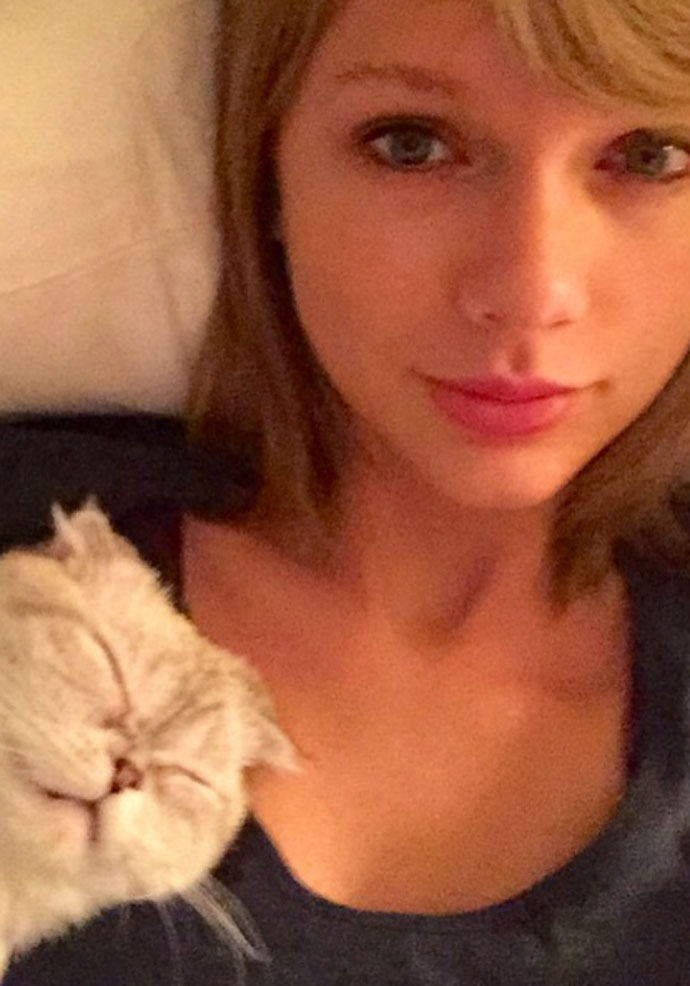 Most Popular Celebrity Instagrams Of 2015: Taylor Swift With A Feline Friend
