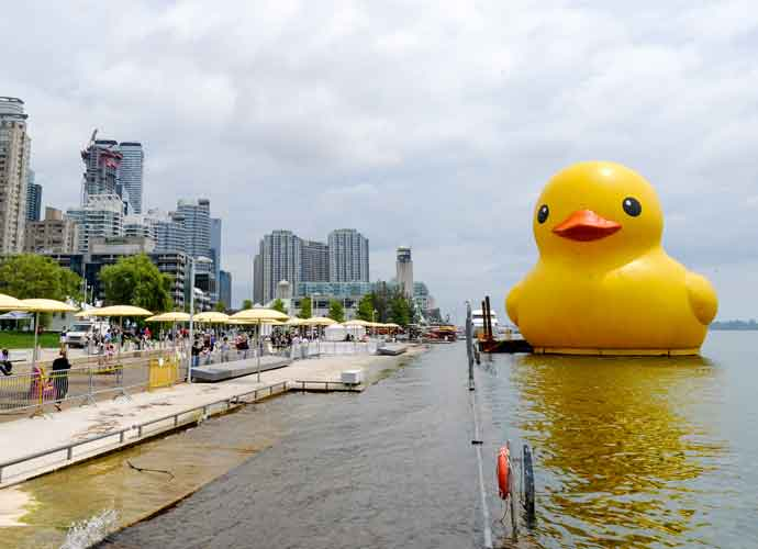 World Largest Rubber Duck Floats On To Celebrate Canada