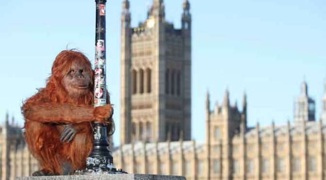 Animatronic Orangutan Takes To London Streets To Raise Awareness About Deforestation