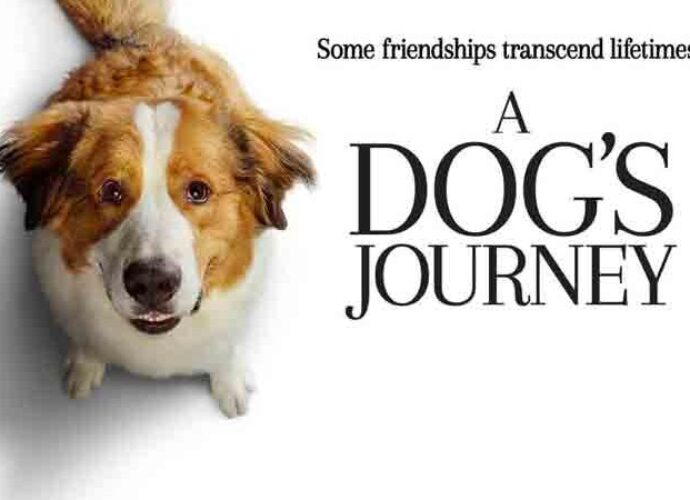 'A Dog's Journey' Blu-Ray Review: Old Dog Relies On Old Tricks