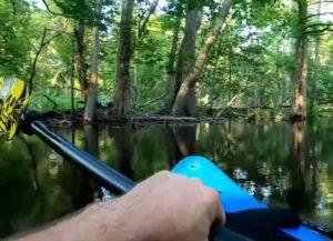 WATCH: Kayaker Captures Alligator Attack In North Carolina River On Video