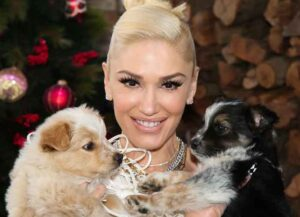 """UNIVERSAL CITY, CALIFORNIA - DECEMBER 02: Singer Gwen Stefani poses with rescue dogs on the set of Hallmark Channel's """"Home & Family"""" at Universal Studios Hollywood on December 02, 2020 in Universal City, California."""