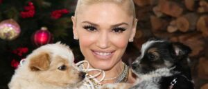 "UNIVERSAL CITY, CALIFORNIA - DECEMBER 02: Singer Gwen Stefani poses with rescue dogs on the set of Hallmark Channel's ""Home & Family"" at Universal Studios Hollywood on December 02, 2020 in Universal City, California."