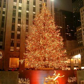 Rockefeller Christmas Tree Lighting Ceremony Draws Big Stars