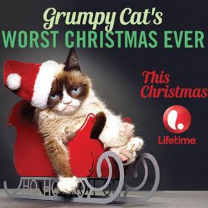 """""""Grumpy Cat"""" Gets Her Own Movie With Aubrey Plaza"""