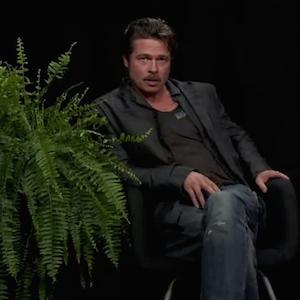 Zach Galifianakis Asks Brad Pitt About Jennifer Aniston On 'Between Two Ferns'