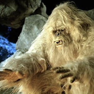Yeti Mystery Could Soon Be Solved