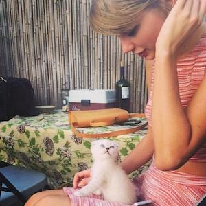 Taylor Swift Celebrates National Cat Day
